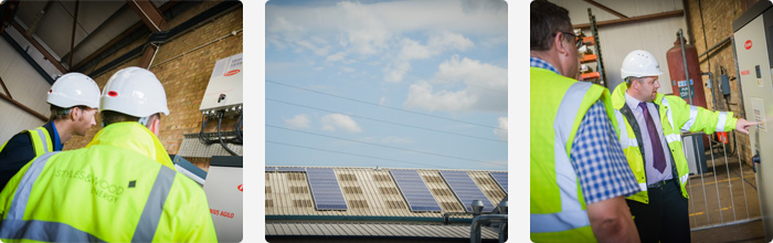 Williams installs massive solar energy system