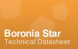 Boronia Star Datasheet.