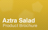 Aztra Salad Brochure.